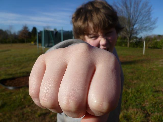 autonomie fist-bump-933916_640
