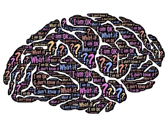 Falten des Gehirns brain-859329_640